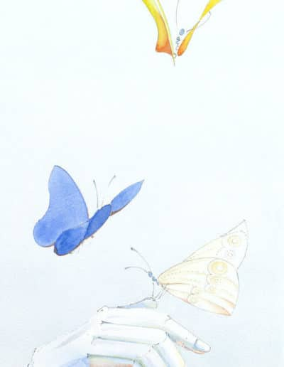 Butterfly in the sky (morning, noon, evening)
